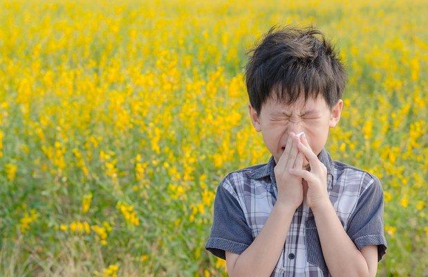 cocuklarda-polen-alerjisine-karsi-dikkat-edilecekler-F655jlw1.jpg